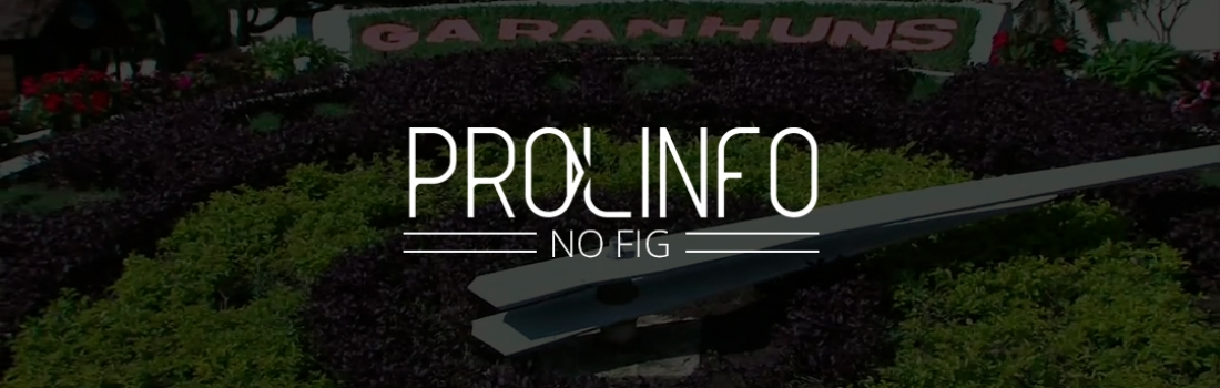 PROLINFO no FIG 2018